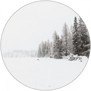 Label R Muurcirkel Snow
